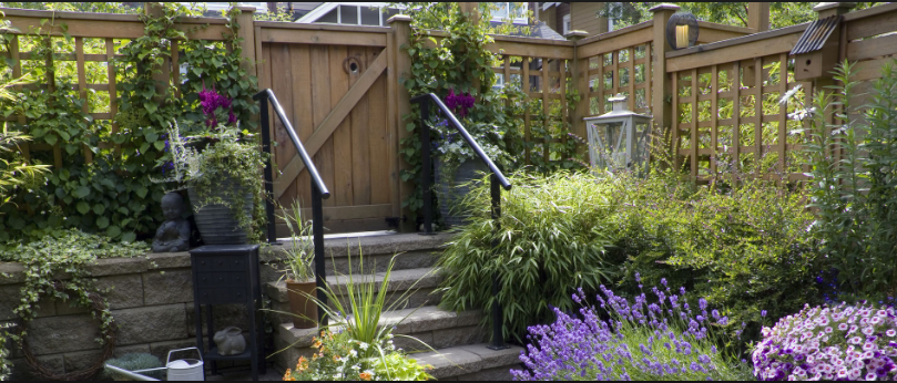 Why Should You Remove The Green Waste From Your Backyard?