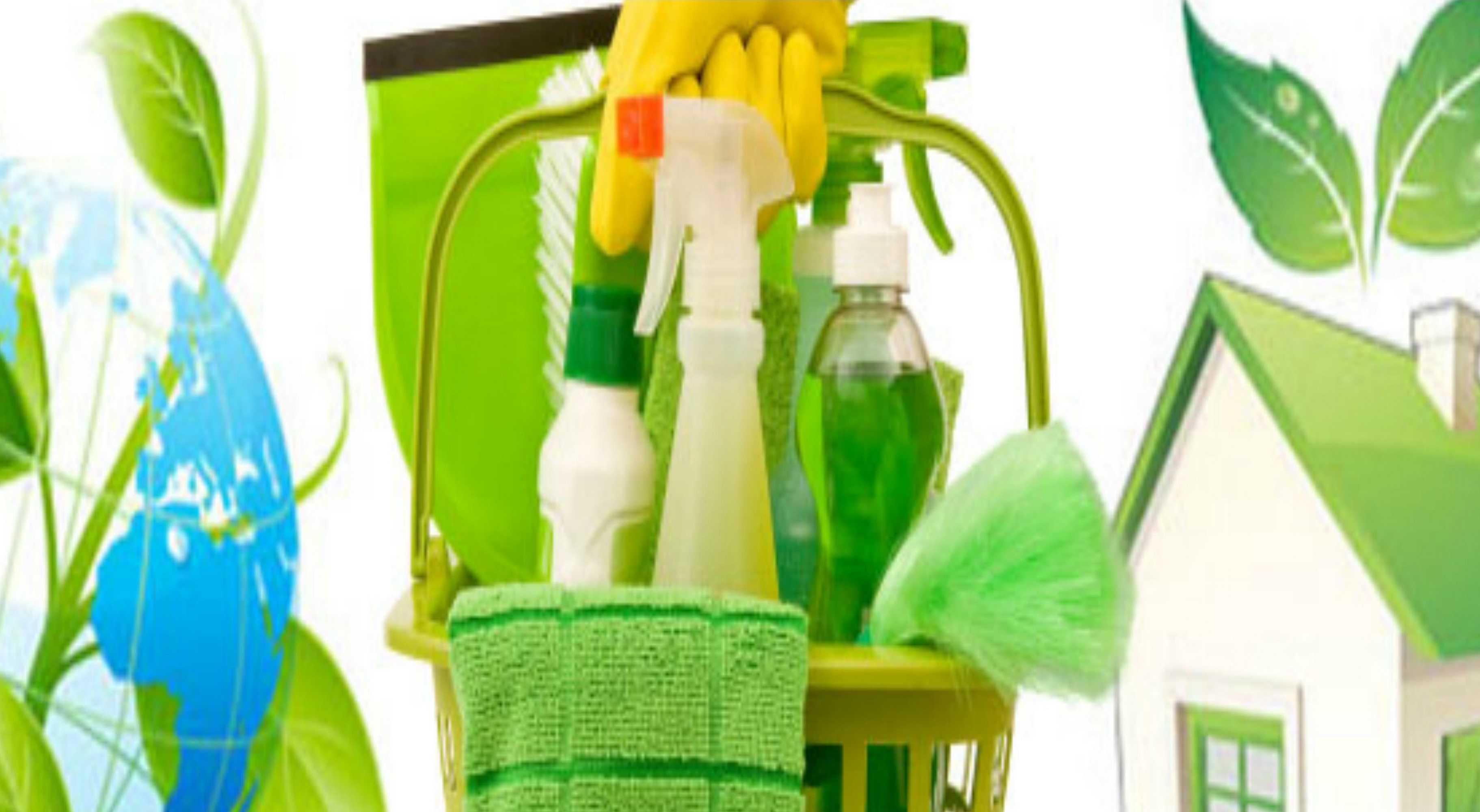 Reasons To Use Green Cleaning Products