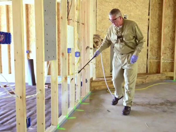 Kinds of Effective Termite Treatment